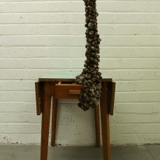 Marie Hannon_Table_Snail Shells and Old Table_76cmx154cmx52cm_2014